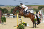 Level 5 Showjumping - L-Springen 55