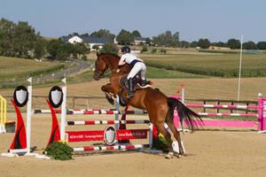 Level 5 Showjumping - L-Springen 48 huge horse by LuDa-Stock
