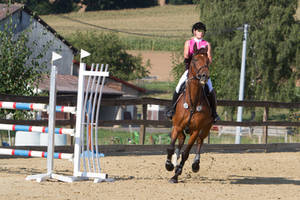 Show Jumping Refusal Series 4 by LuDa-Stock