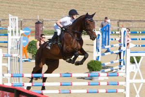 Level 5 Showjumping - L-Springen 13 by LuDa-Stock