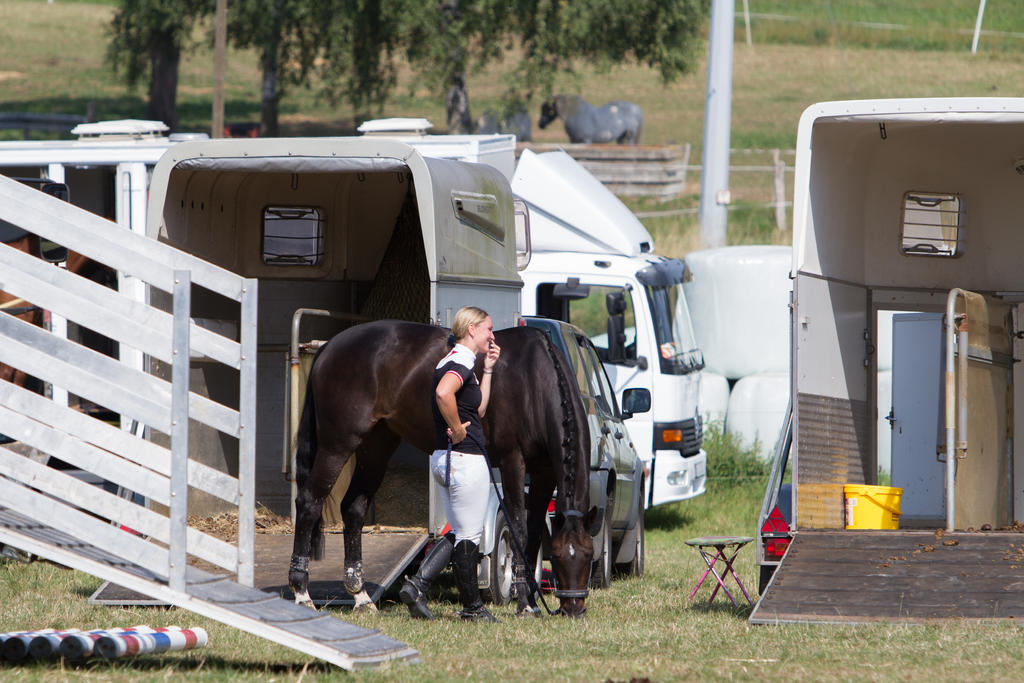 Horse Grazing between Trailers on Competition by LuDa-Stock