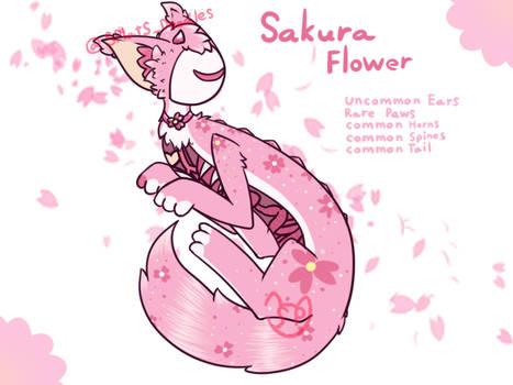 Sakura Flower Sneeker (GA Made Sneek)
