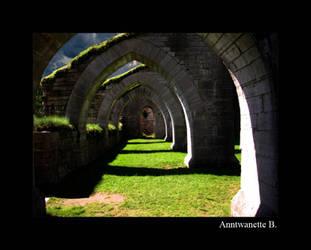 Cathidral Garden by Ani415