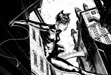 Catwoman - Midnight Stroll