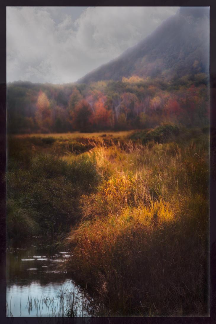 Acadian Autumn in Dispelling Noonlit Mist by AugenStudios