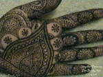 Intricate Indian Mehndi