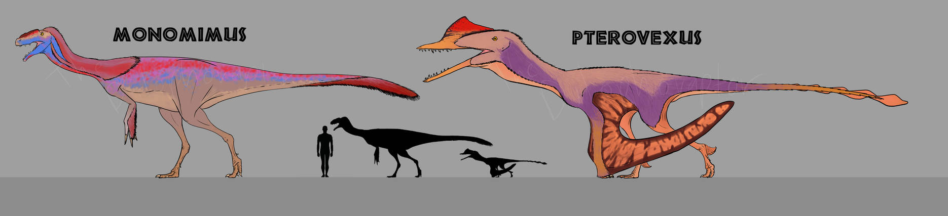 Monomimus and Pterovexus Redesigns