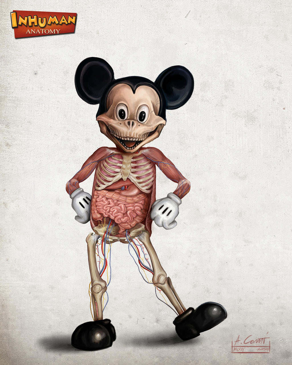 Mickey's anatomy by AlessandroConti
