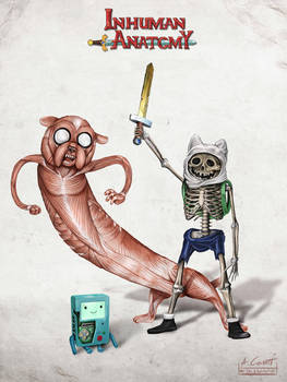 Inhuman anatomy - Adventure Time