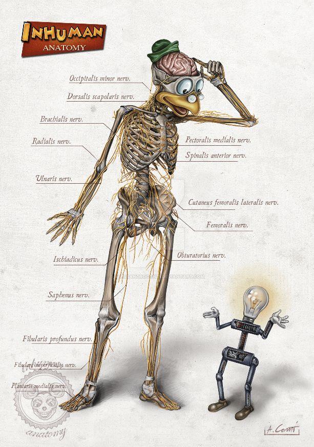 INHUMAN ANATOMY (series 2) Gyro's anatomy by AlessandroConti