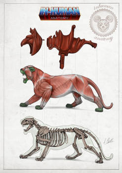 BATTLE CAT anatomy