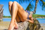 Coconut tree bed