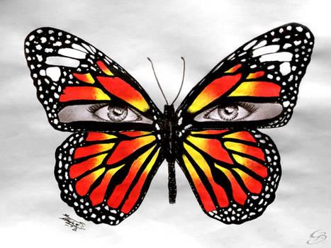 Butterfleyes