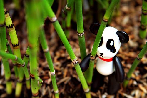 Popobe Panda by badlydrawndoll