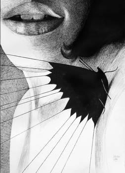 Tied Butterfly
