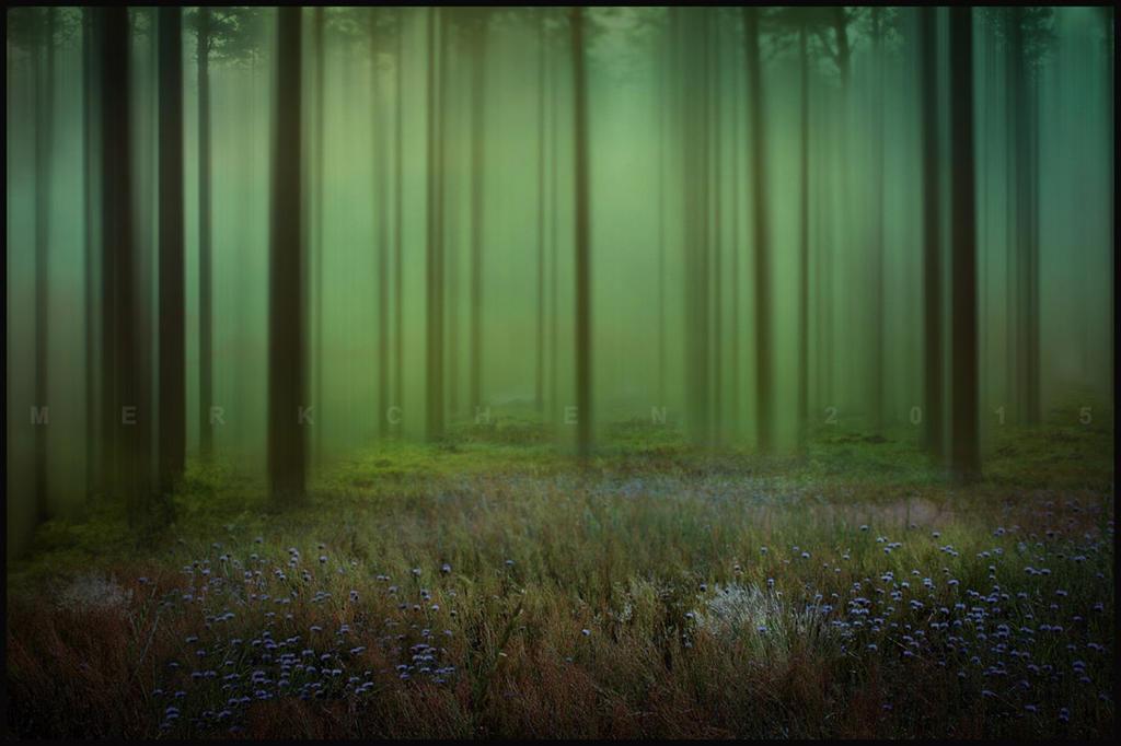 Enjoy the silence by merkchen