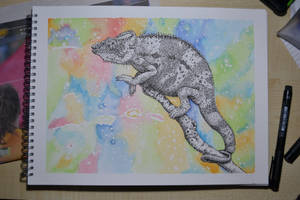 Colourless Chameleon by squeglz
