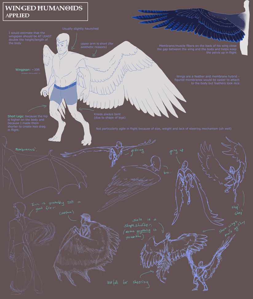 Winged Humanoid: Part 4 by mernolan