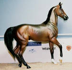 custom breyer akhal teke horse