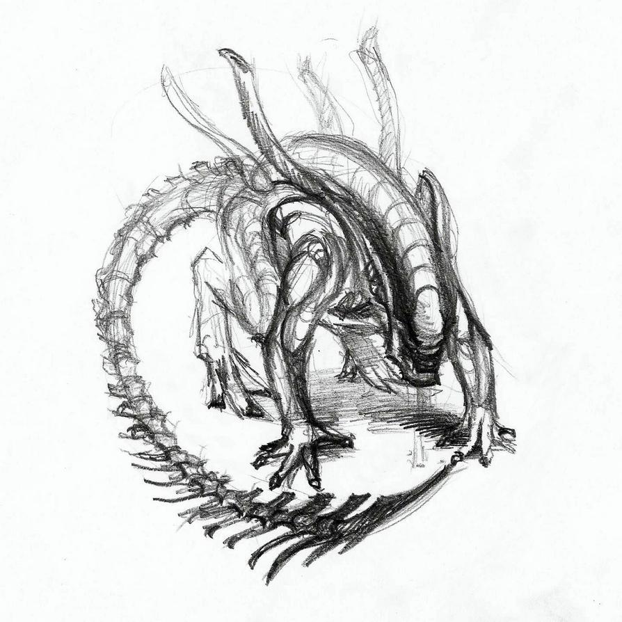 Xenomorph sketch