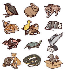 Thesis Animals Drawings by Vogelspinne