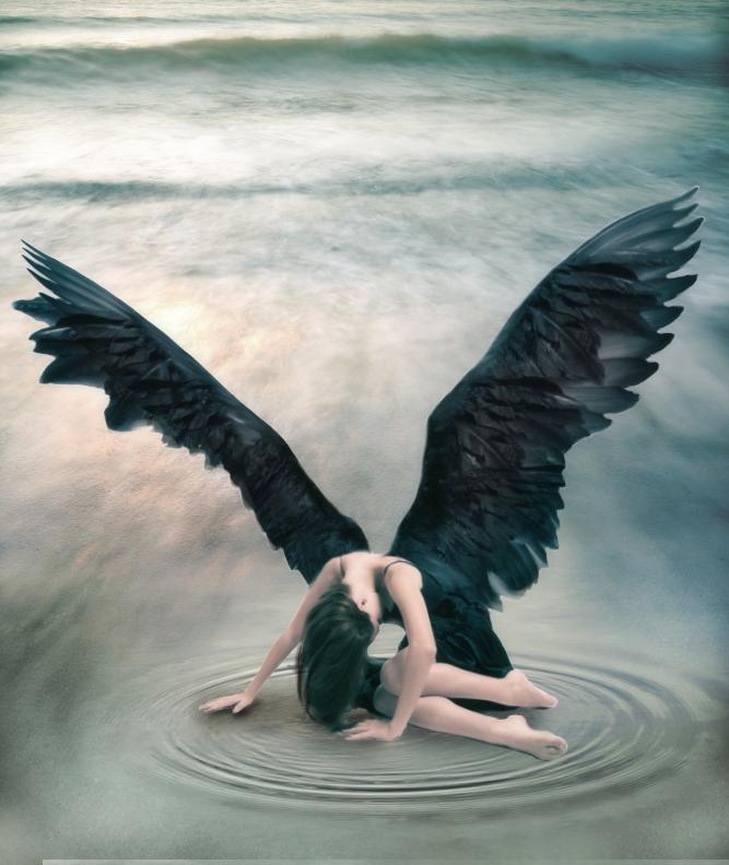 dark wings by SchatzIna