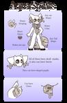 Aqua spirits guide