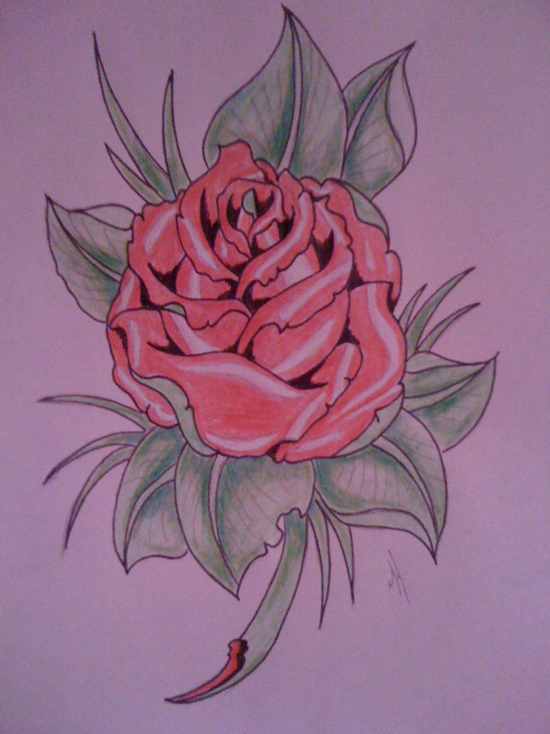 Rose Drawings Pictures to Pin on Pinterest - PinsDaddy