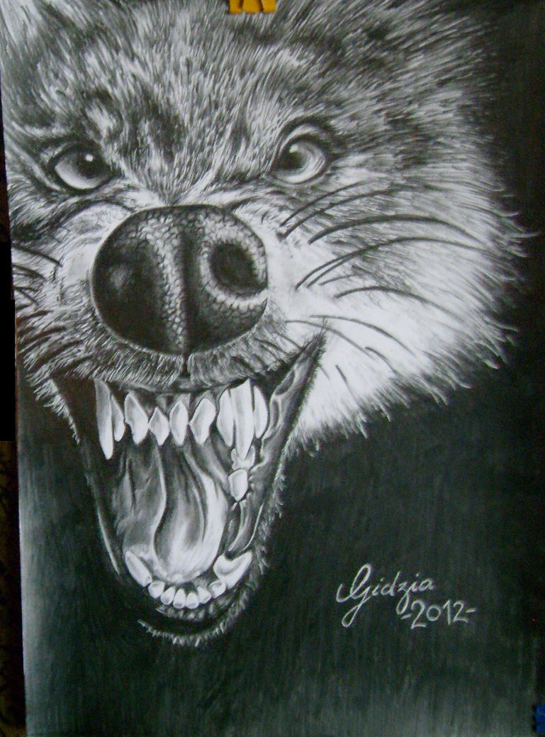 Wolf by Gidzia