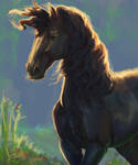 #Equinemarch 10: Black Beauty