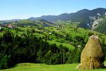 Swiss Romania