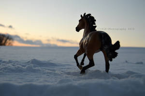 Over the Vast Tundra by KLK-Photography