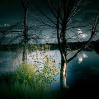 The Fallen Son by VexingArt