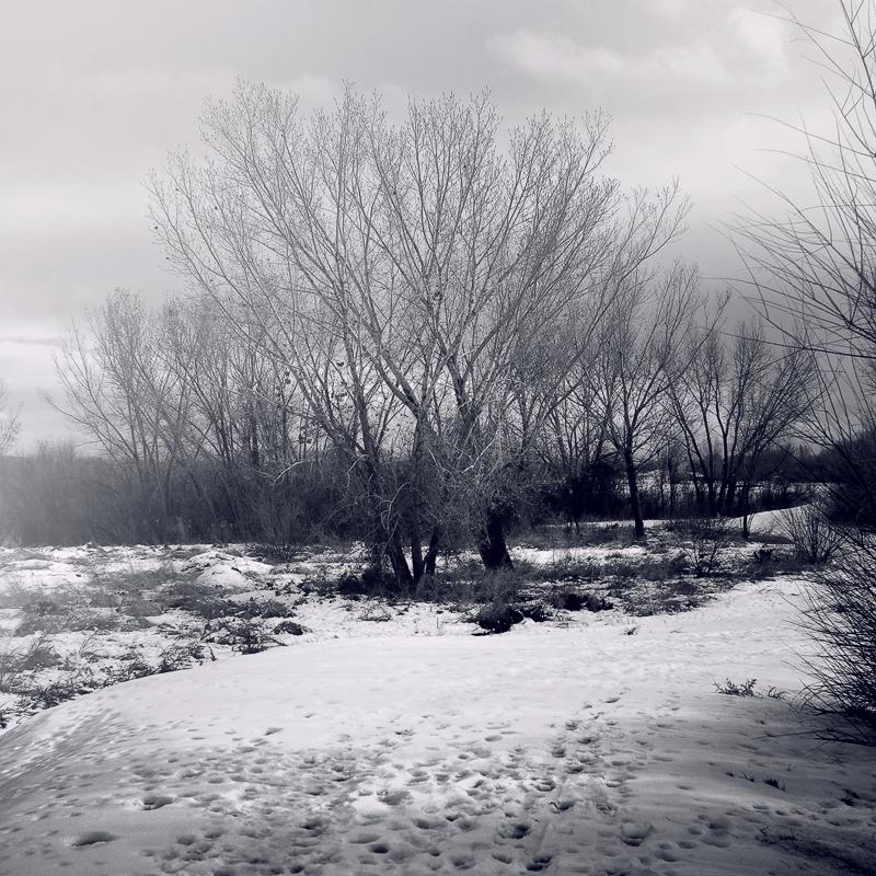 Winters Song by VexingArt