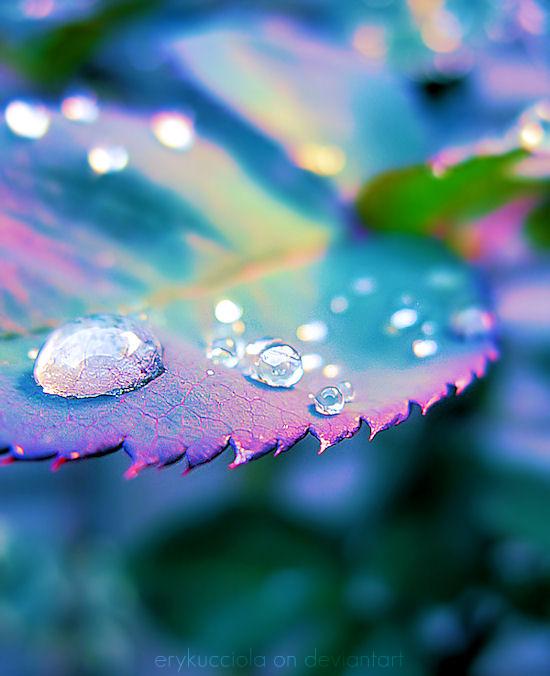 Let it rain by erykucciola