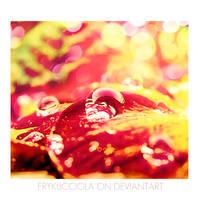 Red Magic Drops by erykucciola