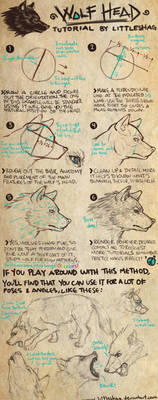 Wolf Head- TUTORIAL
