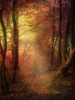 Autumn Forest - Premade Background by la-voisin