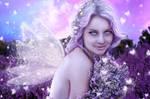 Dreams in Lavender
