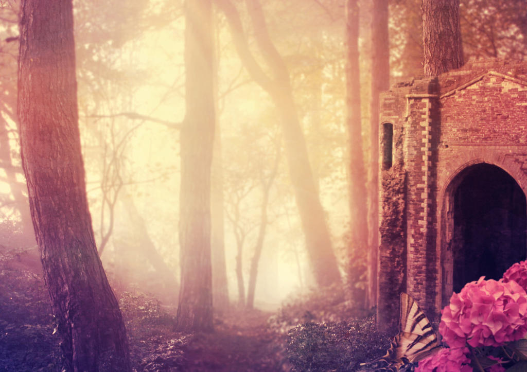 Forest Glow - Premade Background