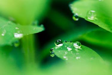 Green world by RasmusLuostarinenArt