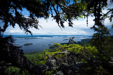 Koli National Park by RasmusLuostarinenArt
