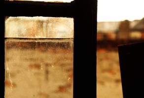 window by snake6630