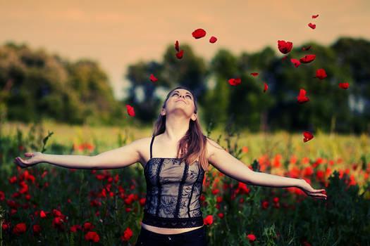 Freedom of Love