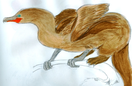 Cormorant Griffin by AshtarDragonfire
