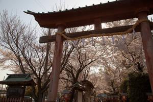 open the gate by juju--juju