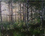 Rays of spring in the birch forest