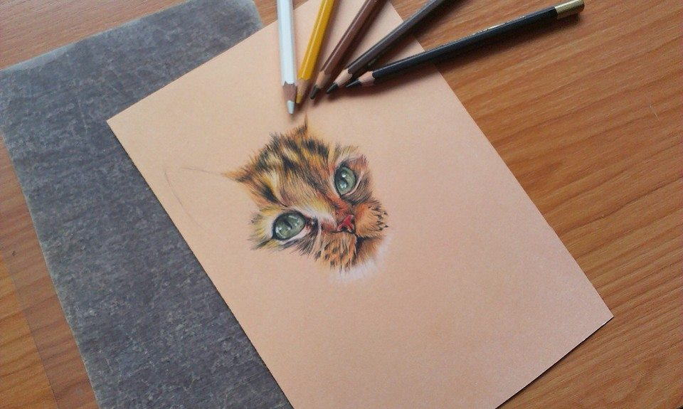 Cat IV. - WIP by Mishice