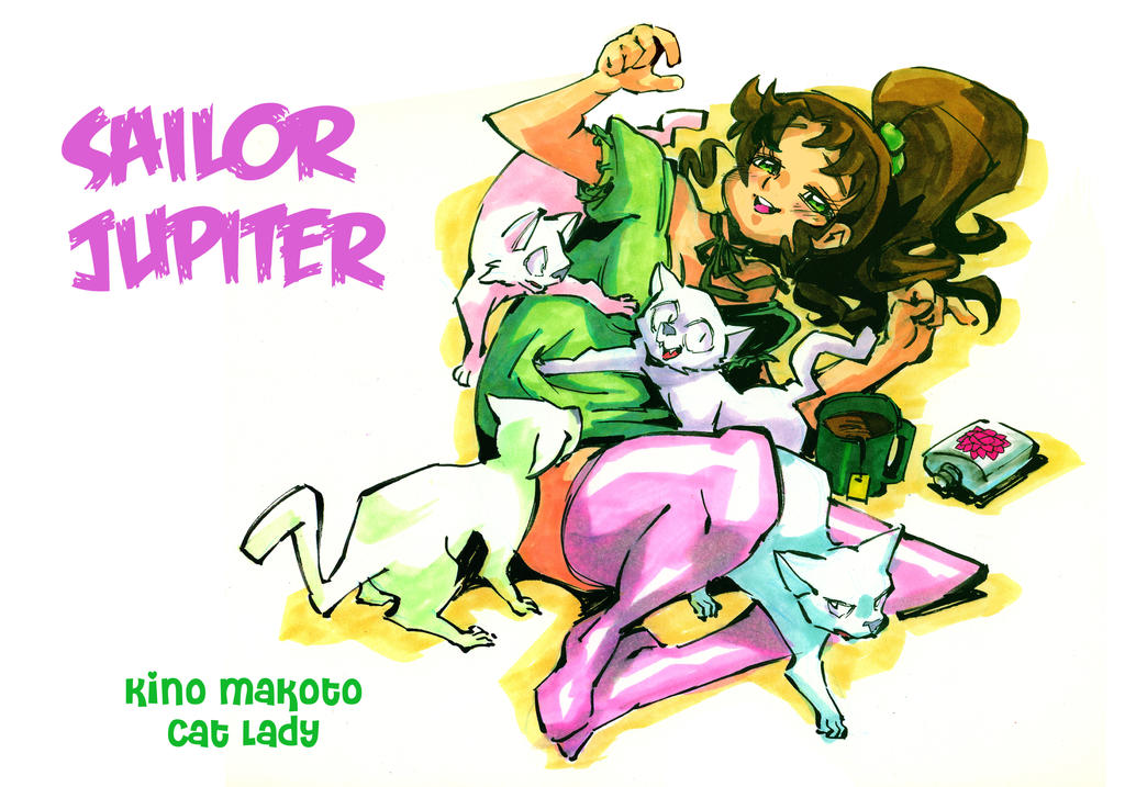 Sailor Jupiter by Rafchu
