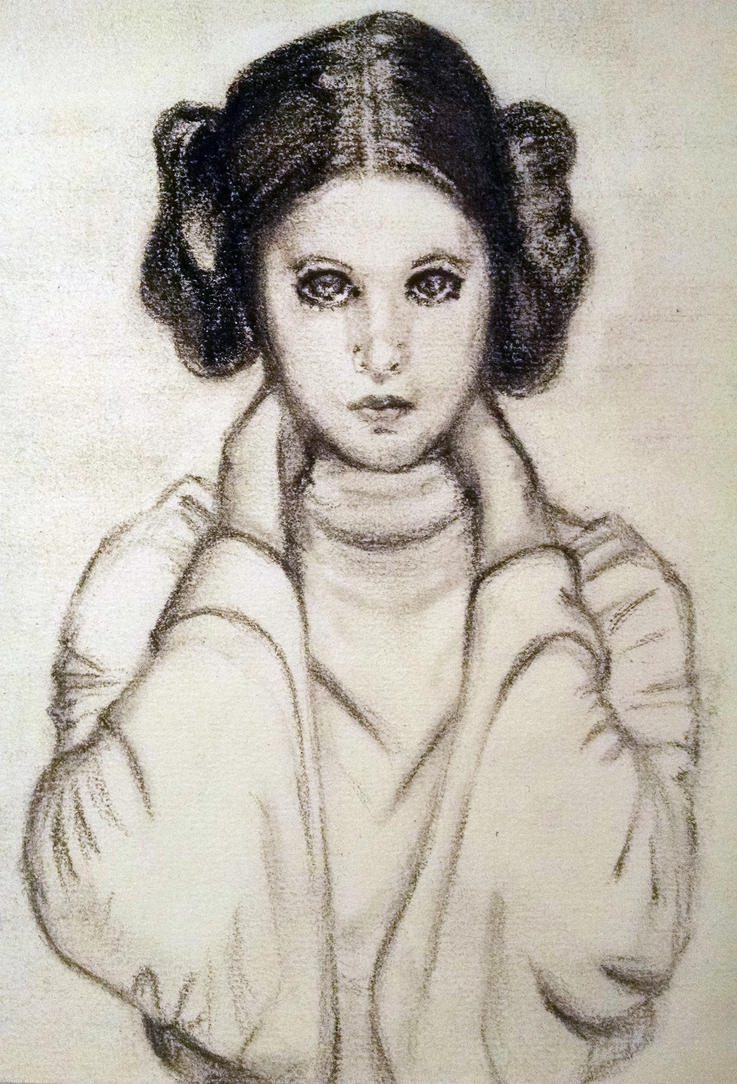 Princess Leia Organa by doxinge